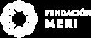 Fundacion MERI